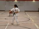 June 2011 Black Belt Grading and Seminars in Thunder Bay, ON